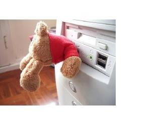bear usb